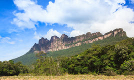 Mountains in national park canaima Royalty Free Stock Image
