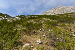 Mountains in National Park Durmitor, Montenegro Royalty Free Stock Photos
