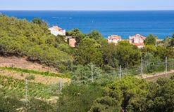 Mountains near Collioure village, Roussillon, Vermilion coast, Pyrenees Orientales, France Stock Image