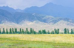 Mountains near Issyk- Kul lake in Kyrgystan during summer season Royalty Free Stock Photo
