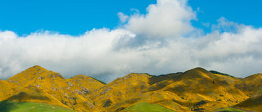 Mountains of New Zealand Royalty Free Stock Photos