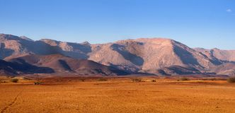 Mountains in northern Namibia, in the forefront of welvitschie. The Mountains in northern Namibia, in the forefront of welvitschie royalty free stock image