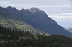Mountains in Olympic National Park stock image