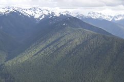 Mountains in Olympic National Park royalty free stock images