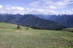 Mountains in Olympic National Park stock photos