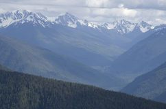 Mountains in Olympic National Park royalty free stock photos