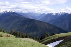 Mountains in Olympic National Park royalty free stock photo