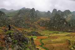 Mountains and paddies near Dong Van in Ha Giang Stock Images