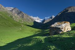 Mountains pasture. In Kyrgyzstan, At-Bashi sierra Royalty Free Stock Photo
