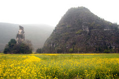 Mountains and pasture scenery in Wanfenglin,Guizhou in China. Stock Photos