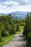 Mountains path Royalty Free Stock Images