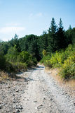 Mountains Path Stock Images