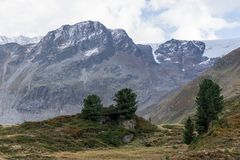 Mountains, peaks, everlasting ice and trees landscape Royalty Free Stock Images