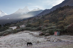 Mountains peaks morning fog, Tengboche village, Nepal. Royalty Free Stock Photos