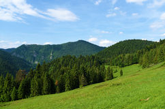 Mountains Pieniny in Slovakia and Poland Royalty Free Stock Image