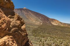 Mountains and pine tree forest near volcano Teide, partly covered by the clouds. Bright blue sky. Teide National Park, Tenerife, royalty free stock image