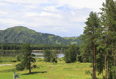 Mountains, pine trees and lake Manzherok. Royalty Free Stock Photo