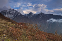 Mountains and plants under a cloudy sky Stock Images