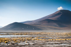 Mountains on the plateau Altiplano, Bolivia Royalty Free Stock Images