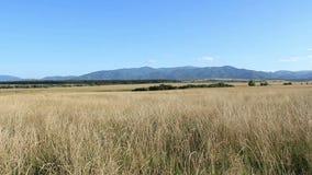 Mountains Profile at Horizon stock video