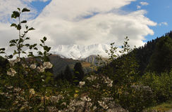 The mountains in Racha near Mamison Pass, Georgia Stock Photo