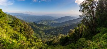 Mountains range view behind the mist of forest and tree Royalty Free Stock Photography