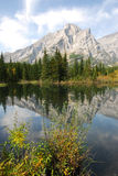 Mountains and reflection pond Royalty Free Stock Photo