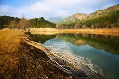 Mountains river  in autumn day.  Muga, Catalan Pyrenees Stock Photo