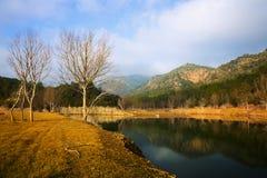 Mountains river  in autumn day Stock Photos