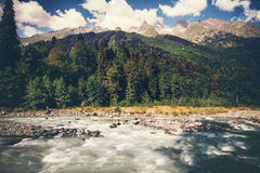 Mountains River and forest Landscape Royalty Free Stock Photography