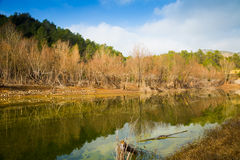 Mountains river with forest riverside Stock Photography