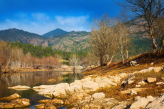 Mountains river with forest riverside Stock Photos