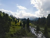 Mountains with a river and many firs royalty free stock photo