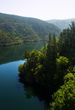 Mountains river  with steep foresty banks Stock Images