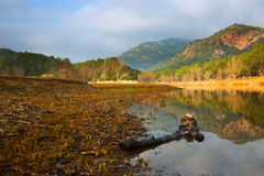 Mountains river under cloudy sky in autumn. Muga, Catalan Pyrenees. Spain Royalty Free Stock Images