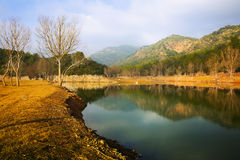 Mountains river  in winter day.  Muga,  Spain Stock Images