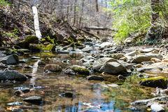 Mountains, Rivers, Rocks, Trees Stock Photography