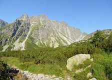 Mountains. Rock mountains and trees in Slovakia Stock Photography