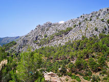Mountains and rocks in Galatzo park Majorca stock image