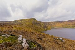 Mountains with rocks and peatland around Lough Bray lower lake in Wicklow mountains. Mountains with rocks  and peatland around  Lough Bray lower lake in Wicklow stock image