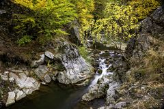 Small river canyon with waterfall and autumn foliage Royalty Free Stock Photo