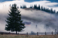 Mountains rural landscape at foggy sunrise Stock Images