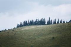 Mountains rural landscape at the rain Stock Photos
