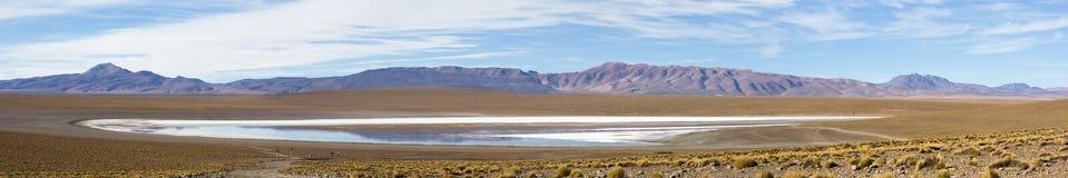 Mountains and salt pan in Eduardo Avaroa Reserve, Bolivia Stock Images
