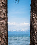 Mountains seen through the pine tree trunks at Lake Tahoe shore Royalty Free Stock Photos