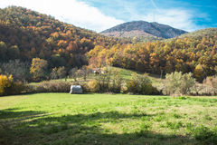 Mountains shepherd serbia Royalty Free Stock Photography