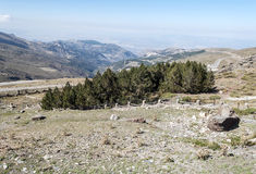 Mountains of Sierra nevada Stock Photography