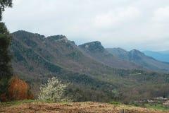 Mountains. Sightseings in La Garrotxa, Catalunya Stock Image