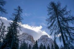 Morning on the Dolomites stock photo