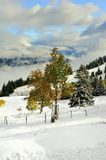 Mountains with snow in winter, Royalty Free Stock Photography
